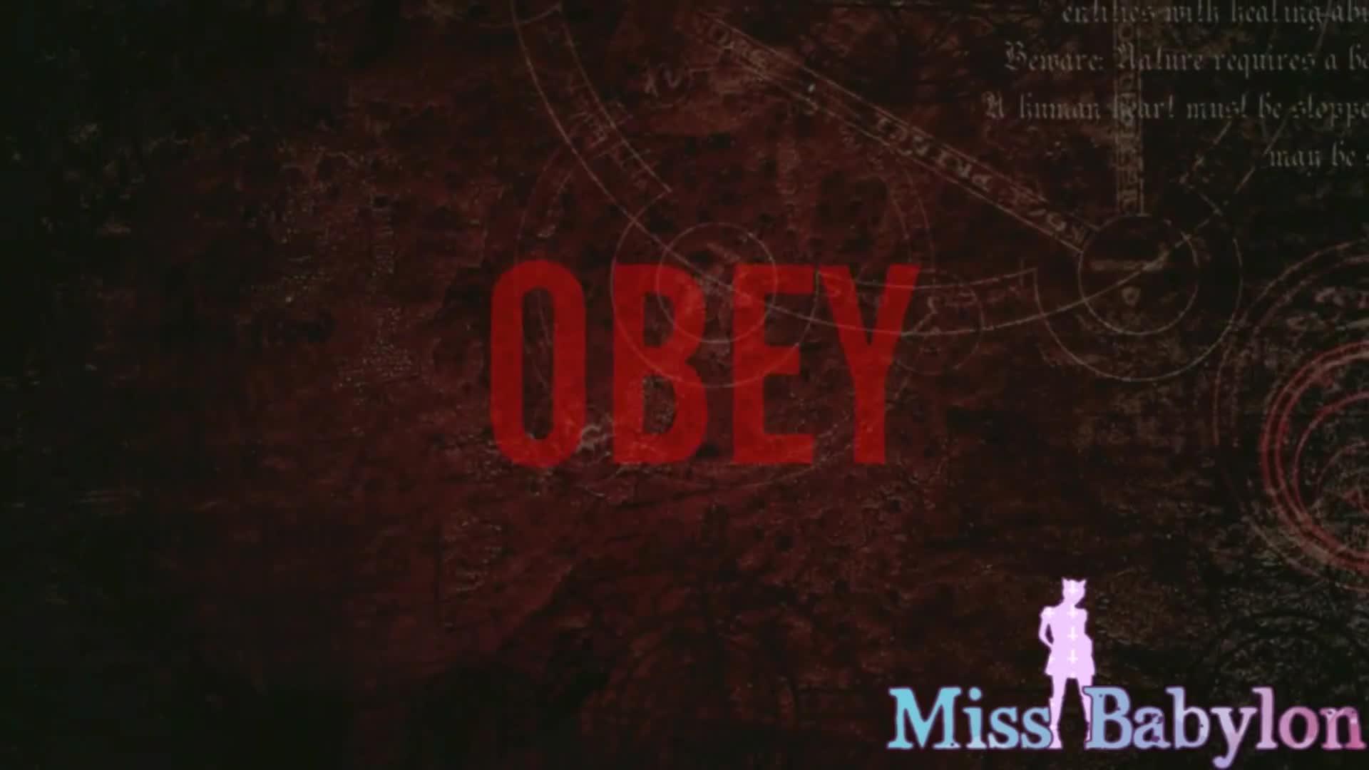 Miss Babylon'd vid